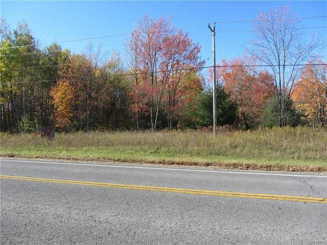 0 Co Route 42, Wilna, NY 13619 (MLS #S1301632) :: MyTown Realty