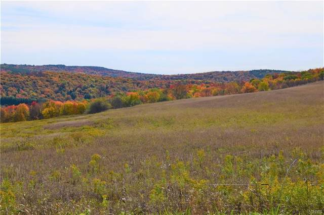 Lot 4 New Turnpike Road, Sherburne, NY 13460 (MLS #S1302276) :: 716 Realty Group