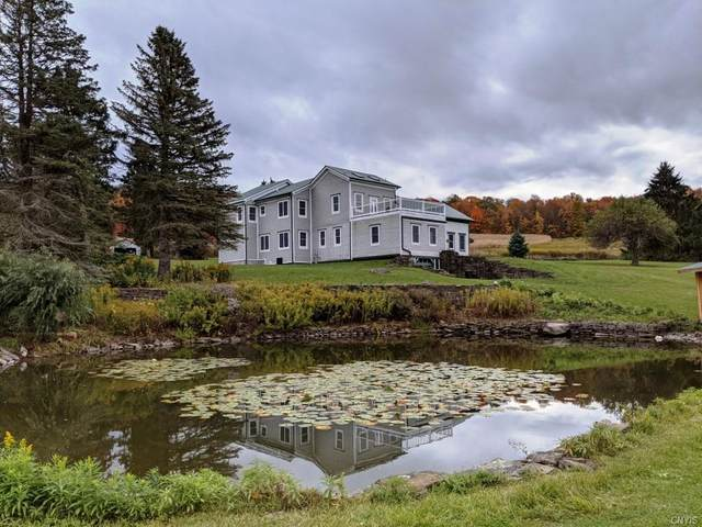 127 Grace Brown Road, Otselic, NY 13155 (MLS #S1302381) :: 716 Realty Group