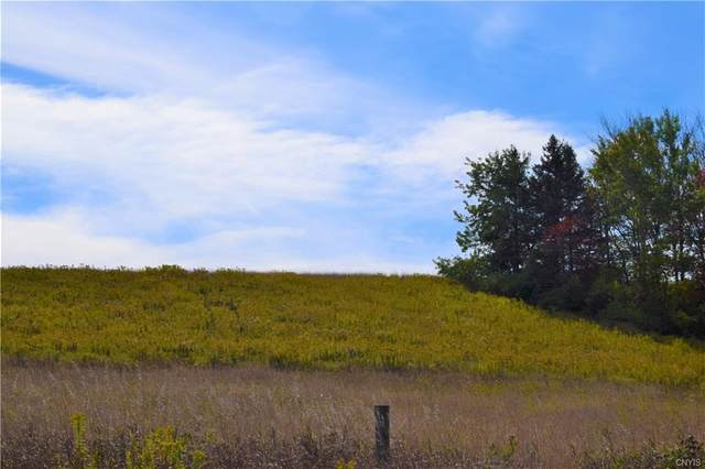 Lot 2 New Turnpike Road, Sherburne, NY 13460 (MLS #S1302445) :: 716 Realty Group