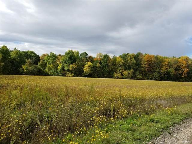 00 River Road, Galen, NY 14433 (MLS #S1302491) :: MyTown Realty