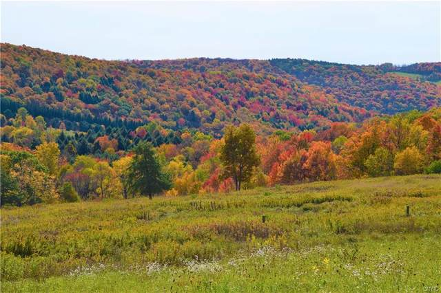 Lot 6 New Turnpike Road, Sherburne, NY 13460 (MLS #S1302591) :: 716 Realty Group