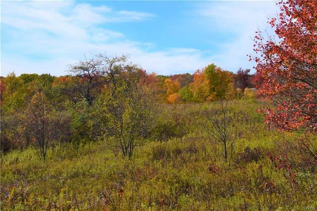 Lot 7 New Turnpike Road, Sherburne, NY 13460 (MLS #S1302753) :: 716 Realty Group