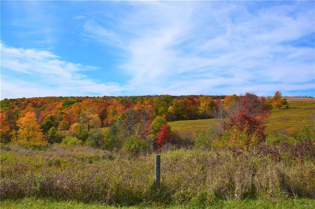 Lot 8 New Turnpike Road, Sherburne, NY 13460 (MLS #S1302784) :: 716 Realty Group
