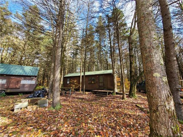0 Johnson Road, Lincklaen, NY 13052 (MLS #S1303481) :: MyTown Realty