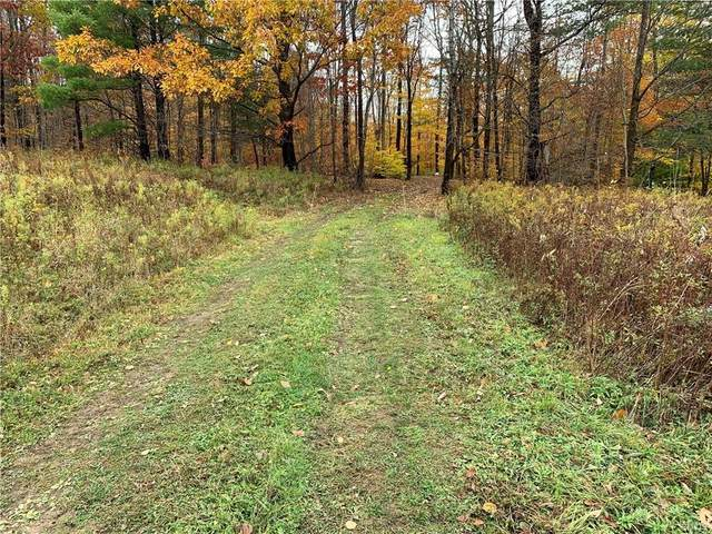 00 Redman Road, Allen, NY 14735 (MLS #S1303528) :: MyTown Realty