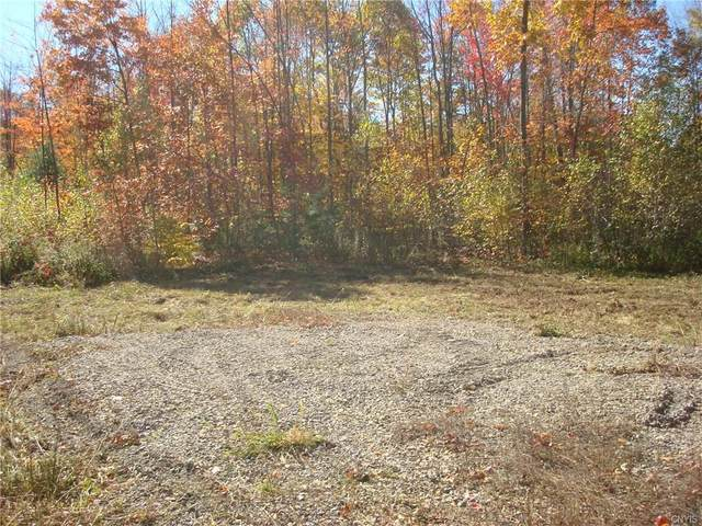 0 Co Route 46, Theresa, NY 13691 (MLS #S1303750) :: Avant Realty