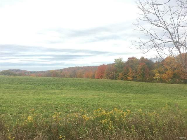 00 Route 20 W, Eaton, NY 13408 (MLS #S1303815) :: Thousand Islands Realty