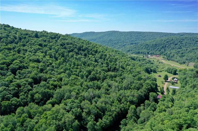 00 Rock Rift Mountain Road, Tompkins, NY 13756 (MLS #S1304202) :: TLC Real Estate LLC