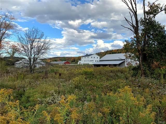 5959 County Highway 18, Edmeston, NY 13485 (MLS #S1304241) :: MyTown Realty