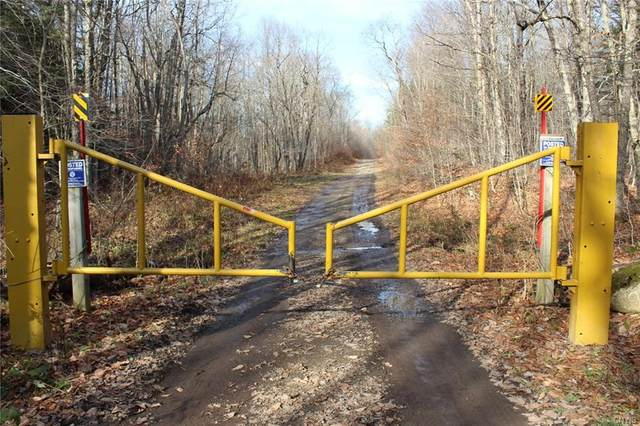 OFF Harvester Mill Road, Redfield, NY 13437 (MLS #S1305651) :: BridgeView Real Estate Services