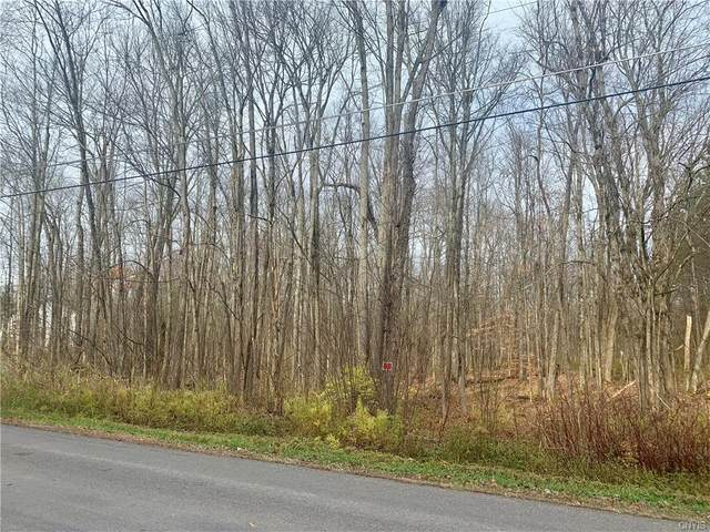 0 Paradise Road, Palermo, NY 13036 (MLS #S1305974) :: BridgeView Real Estate Services