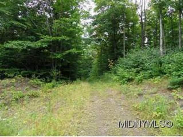 20 Twin Ponds Dr, Newport, NY 13416 (MLS #S1306228) :: TLC Real Estate LLC