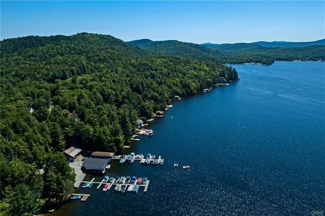 8 State Route 28 Highway, Inlet, NY 13360 (MLS #S1307290) :: TLC Real Estate LLC