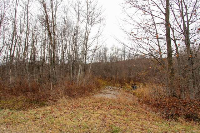 00 Patten Road, Lowville, NY 13367 (MLS #S1307632) :: BridgeView Real Estate Services