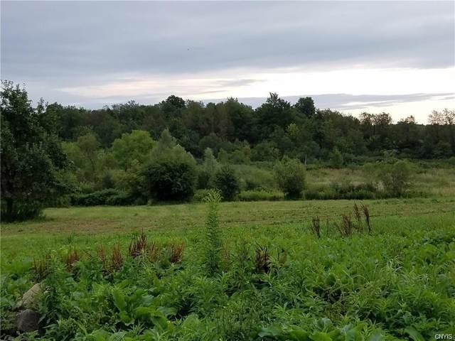 Lot 1B West Lake Rd, Cazenovia, NY 13035 (MLS #S1307807) :: BridgeView Real Estate Services