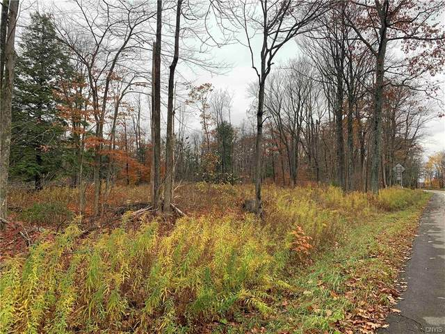 00 Nys Route 16, Allegany, NY 14706 (MLS #S1307849) :: Mary St.George | Keller Williams Gateway