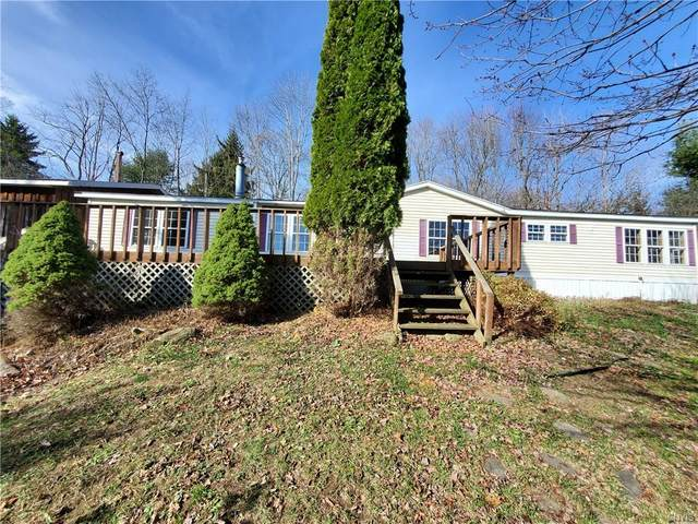1130 Bloody Pond Road, Willet, NY 13040 (MLS #S1308005) :: 716 Realty Group