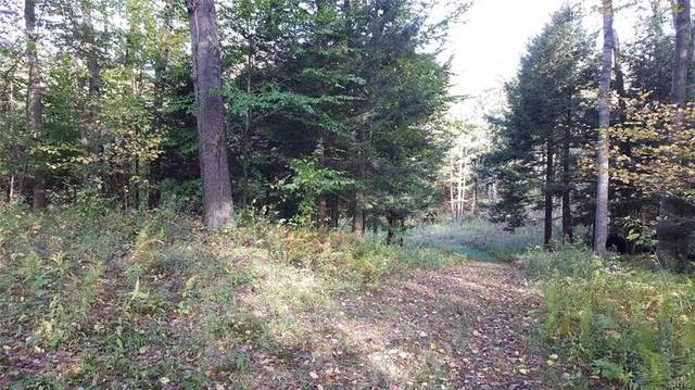 Off Kehoe Road, Sandy Creek, NY 13145 (MLS #S1308322) :: BridgeView Real Estate Services