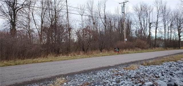0 Co Route 59 Road, Brownville, NY 13634 (MLS #S1309295) :: BridgeView Real Estate Services