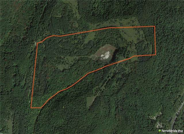 Lot 3 Valley View Road, Richford, NY 13835 (MLS #S1310379) :: BridgeView Real Estate Services