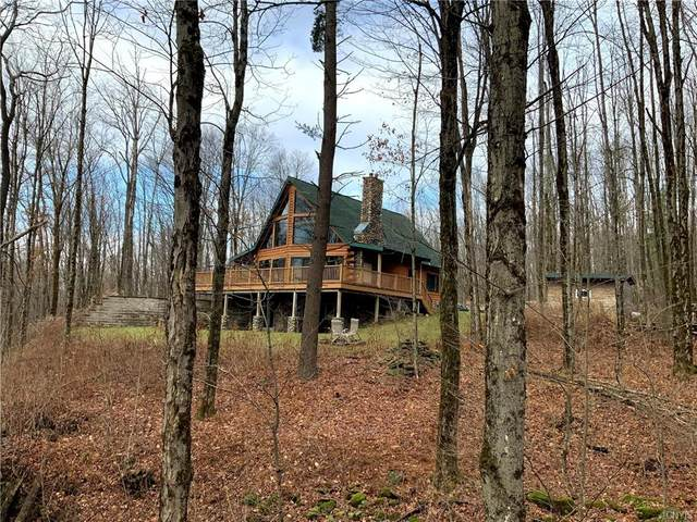 2828 County Route 22, Orwell, NY 13144 (MLS #S1310684) :: Mary St.George | Keller Williams Gateway