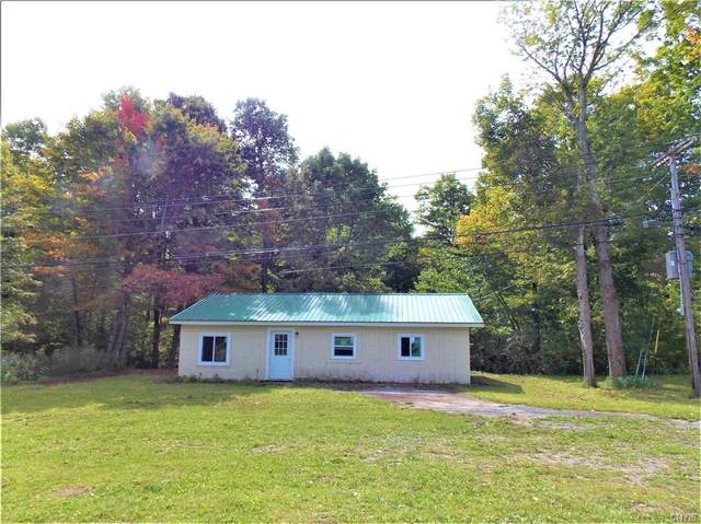 6318 State Route 3, Diana, NY 13665 (MLS #S1310886) :: TLC Real Estate LLC