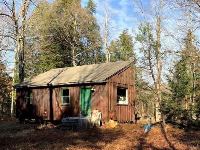 00 Chub Pond Trail Road, Forestport, NY 13338 (MLS #S1311120) :: TLC Real Estate LLC