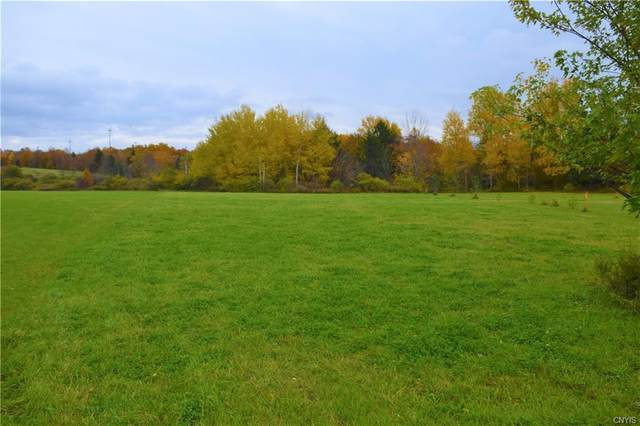 0 Casler Road, Fairfield, NY 13365 (MLS #S1311648) :: MyTown Realty