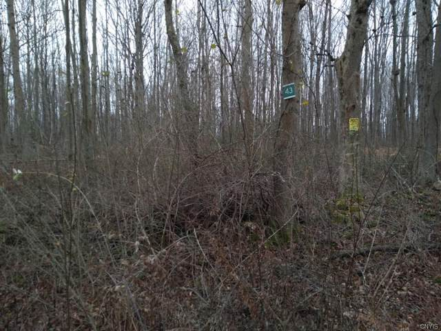 Lot 43 Irwin Road, Sterling, NY 13156 (MLS #S1311901) :: MyTown Realty