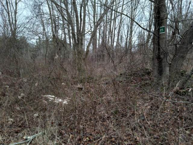 Lot 45 Irwin Road, Sterling, NY 13156 (MLS #S1311956) :: MyTown Realty