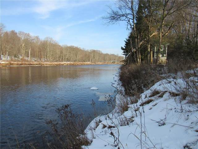 0 Moose River Road, Forestport, NY 13338 (MLS #S1312294) :: Avant Realty