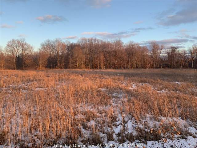 0 Nys Route 3, Ellisburg, NY 13636 (MLS #S1313098) :: BridgeView Real Estate Services