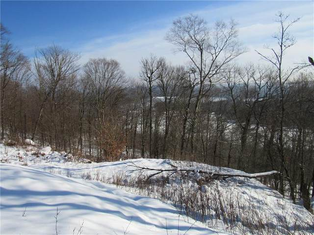 0 Summit Place, Webb, NY 13420 (MLS #S1313303) :: TLC Real Estate LLC