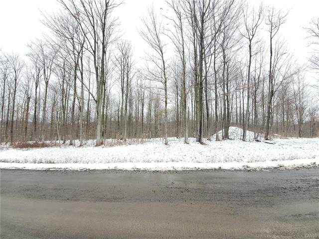 1993 Thermopylae Drive, Virgil, NY 13045 (MLS #S1313649) :: TLC Real Estate LLC