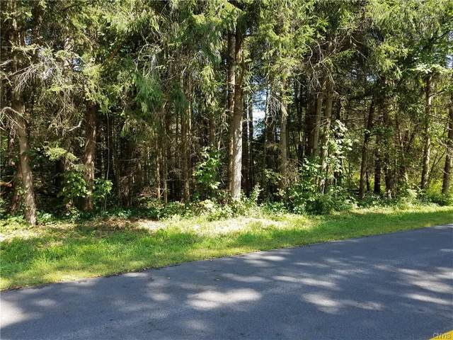 0 Daily Road, Westmoreland, NY 13440 (MLS #S1314193) :: TLC Real Estate LLC