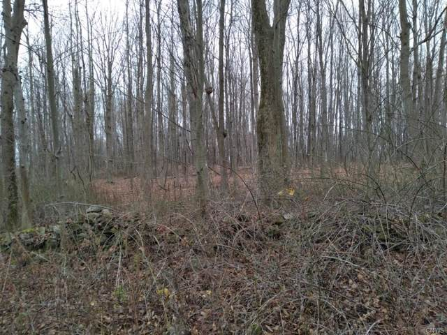 Lot 37 Irwin Road, Sterling, NY 13156 (MLS #S1314212) :: MyTown Realty