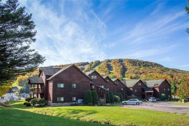2118 Clute Rd Road R2, Virgil, NY 13045 (MLS #S1314947) :: Avant Realty