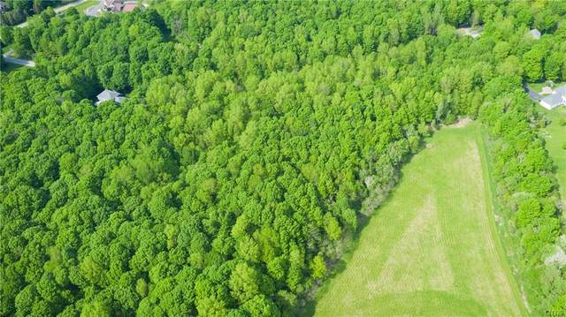 Lot 20 B Fox Ridge Road, Watertown-Town, NY 13601 (MLS #S1315668) :: TLC Real Estate LLC