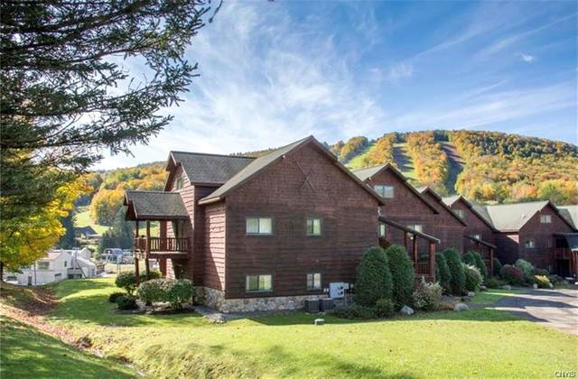 2128 Clute Road R7, Virgil, NY 13045 (MLS #S1315967) :: MyTown Realty