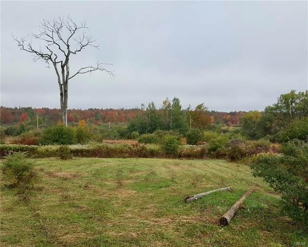 0 Zimmer Road, West Turin, NY 13325 (MLS #S1316031) :: 716 Realty Group