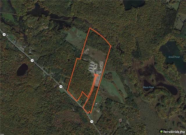 79 Lakewood Road, Williamstown, NY 13493 (MLS #S1316706) :: 716 Realty Group