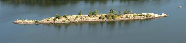 Hog Back Island Hogback, Morristown, NY 13664 (MLS #S1317548) :: Lore Real Estate Services
