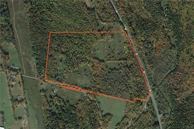 0 Harris Bushville Road, Bethel, NY 12720 (MLS #S1318790) :: Lore Real Estate Services