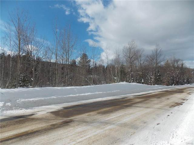 934 Oswegatchie Trail Road, Fine, NY 13690 (MLS #S1319050) :: 716 Realty Group