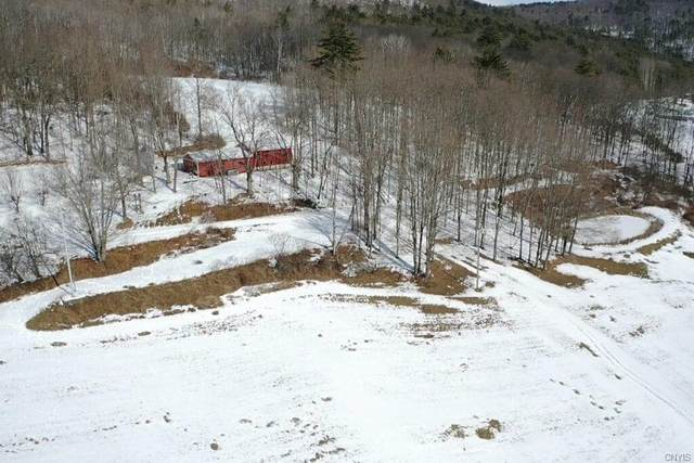 3887 County Route 119, Canisteo, NY 14819 (MLS #S1319803) :: MyTown Realty