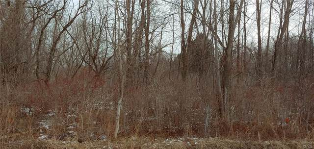 0 Lewis Point Road, Lenox, NY 13032 (MLS #S1321724) :: Thousand Islands Realty