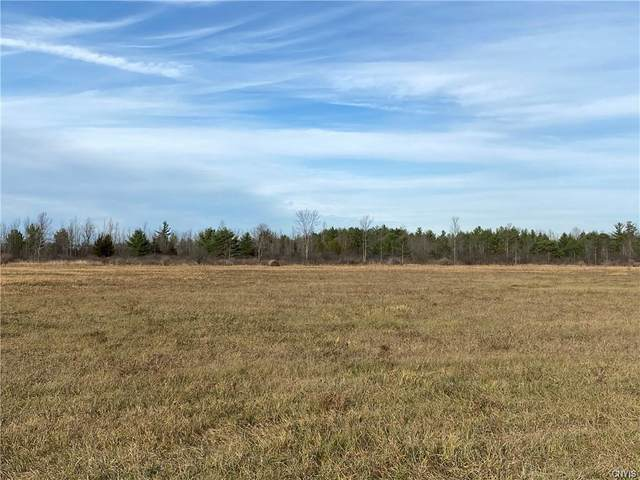 000 Game Farm Road Extension, Brownville, NY 13615 (MLS #S1324538) :: Thousand Islands Realty
