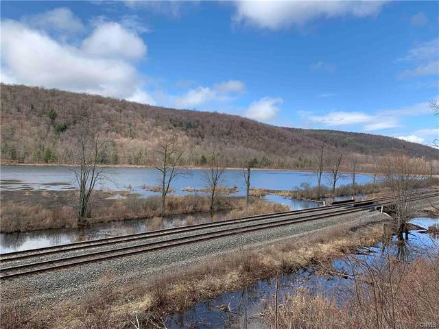 11177 State Route 70, Grove, NY 14884 (MLS #S1326576) :: TLC Real Estate LLC