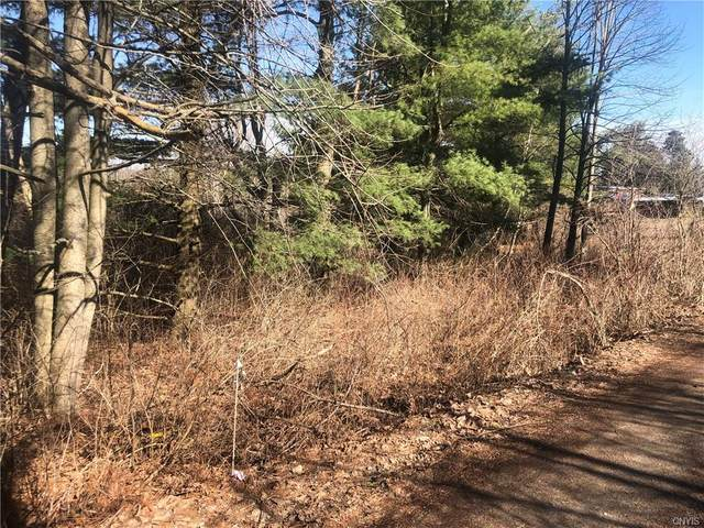 0 Broadwell Road, Theresa, NY 13691 (MLS #S1326862) :: BridgeView Real Estate Services